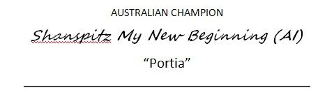 portia-banner